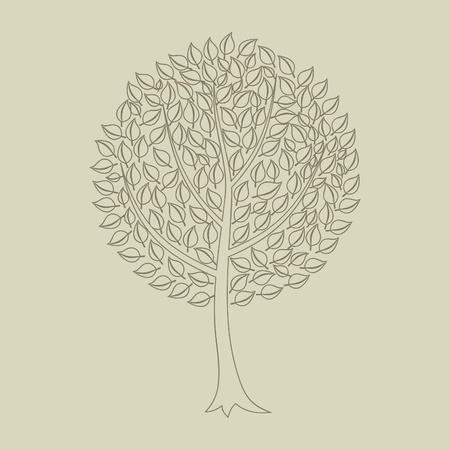 roundish: Tree with a roundish crone  A vector illustration Illustration