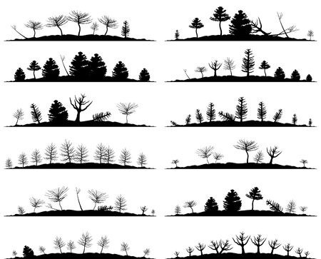 pine tree silhouette: Set of landscapes of woods