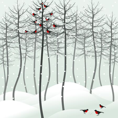 Birds sit on a tree in the winter. A vector illustration Stock Vector - 13711409