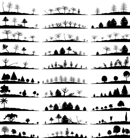Set of landscapes of woods   Vector