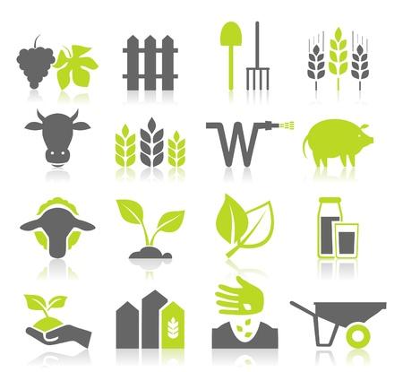 hand cart: Conjunto de iconos en un tema de la agricultura