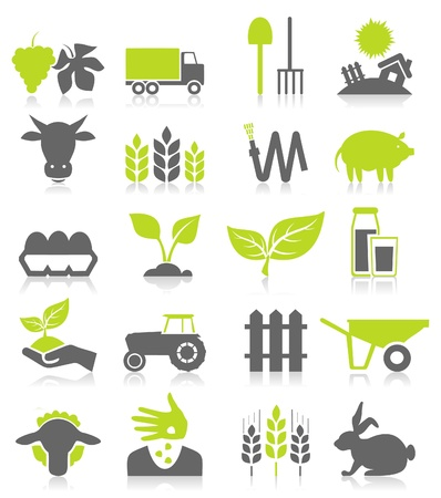 Set of icons on a theme agriculture. A vector illustration Vettoriali