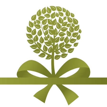 aspen: Green tree on a white background  A vector illustration