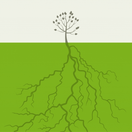 big and small: Small tree with the big root  Illustration