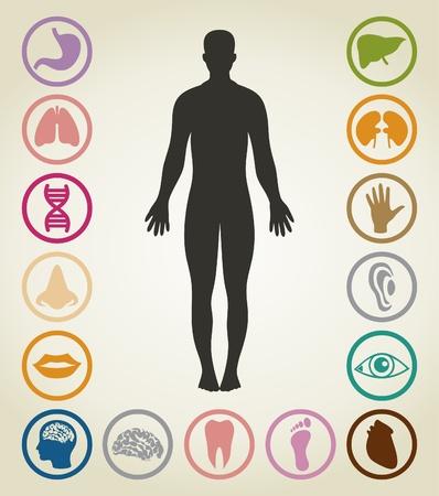 Set von Körpern der Person