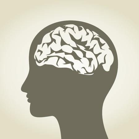 anatomy brain: Capo della persona con un cervello, illustrazione Vettoriali