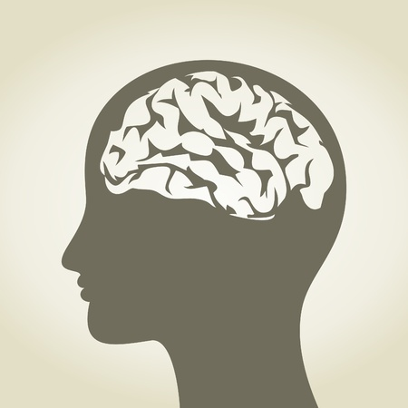 brain and thinking: Head of the person with a brain  A  illustration Illustration