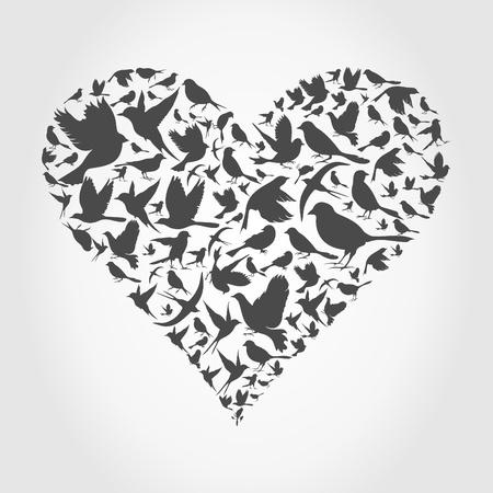 paloma caricatura: Corazón gris recogido de aves Una ilustración Vectores