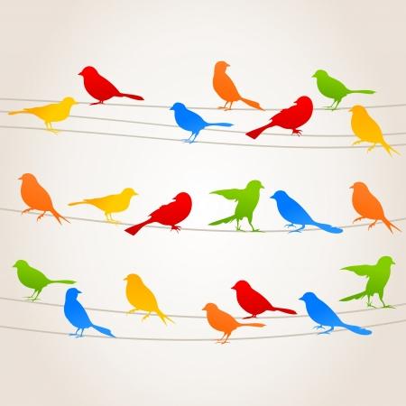twitter: Birds sit on wires. A vector illustration Illustration