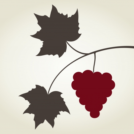 Branch of grapes and cluster of berries  A vector illustration Stock Vector - 16724699