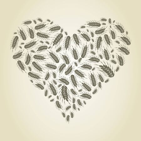 Heart made of wheat ear   Stock Vector - 16886067