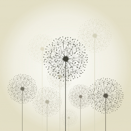 flowers fluffy: Flowers dandelions on a grey background  A vector illustration