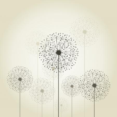 fragility: Flowers dandelions on a grey background  A vector illustration