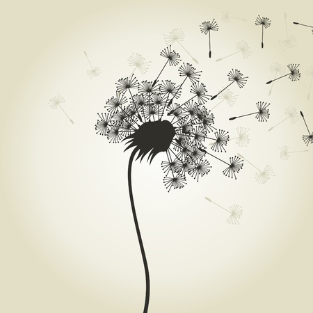From a dandelion seeds fly  A vector illustration Vector