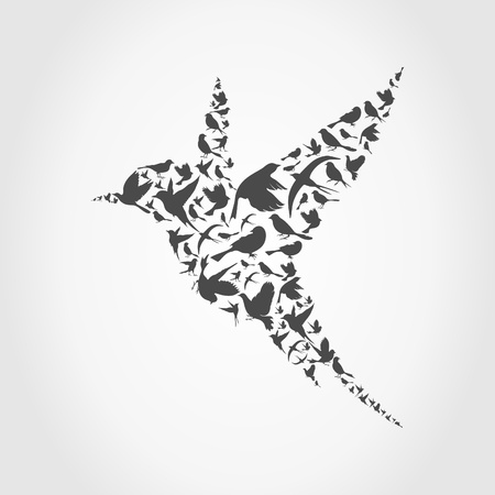 a feather: Birdie made of birds. A vector illustration Illustration