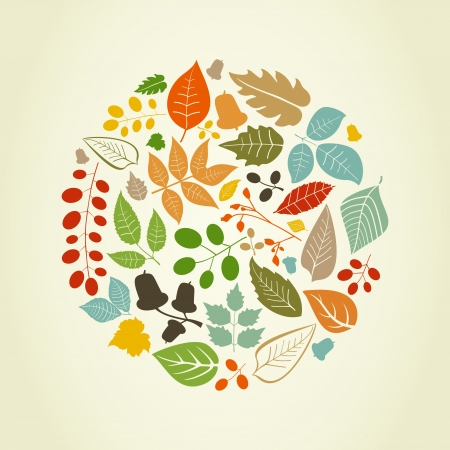 Autumn leafs in the form of a circle illustration Vettoriali