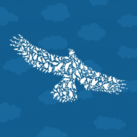 parrot tail: Bird an eagle in the sky. A illustration