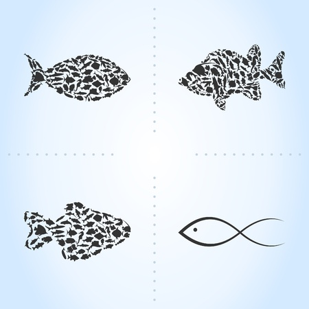 Ensemble de poissons de mer.