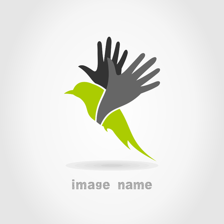 Bird in flight on a grey . A vector illustration Vector