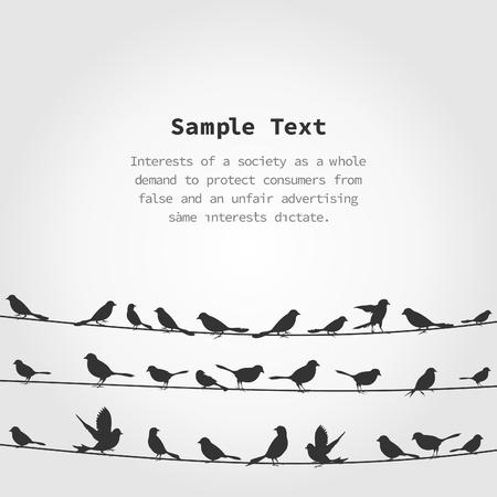 birds in flight: Set of birds on wires. A vector illustration