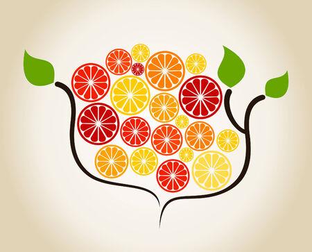 segment: Orange on a tree branch. A vector illustration