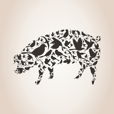 pig wings: Pig made of birds. A vector illustration