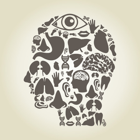 body parts: Head made of body parts. A vector illustration
