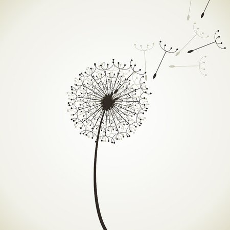 dandelion flower: The flower is the dandelion.