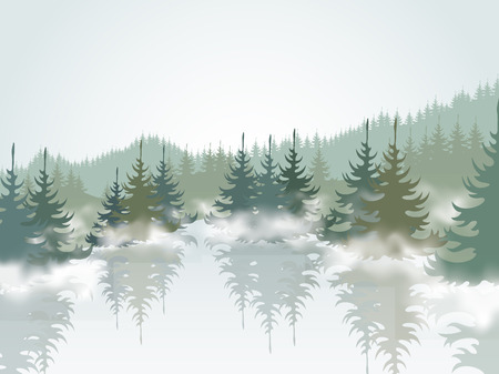 fog forest: Forest and mountain lake
