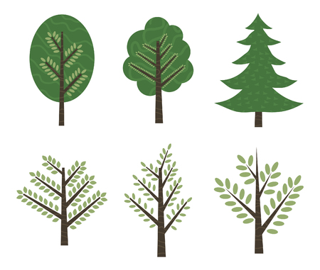 oak wood: A set of trees. Vector illustration