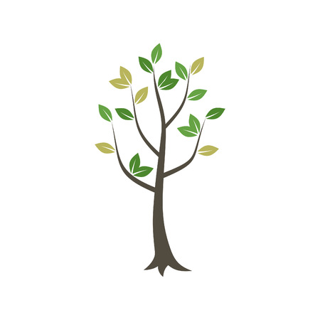 Tree with a green crone. A vector illustration Illustration