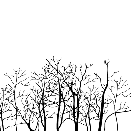 Forest of trees on a white background. Vector illustration Illustration