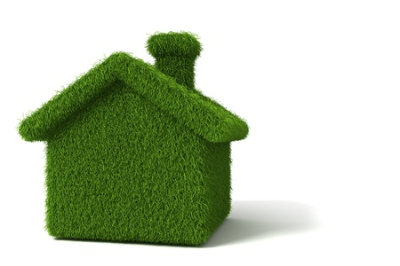 home safety: Grass house ecology