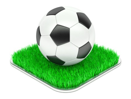 leather goods: Classic soccer ball on grass section isolated on white background