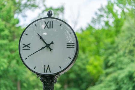 big white street clock on a background of green trees 版權商用圖片