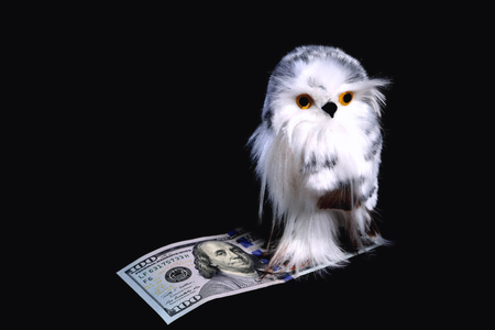 Toy cute eagle owl with yellow eyes sits on a bill of $ 100 on a black background