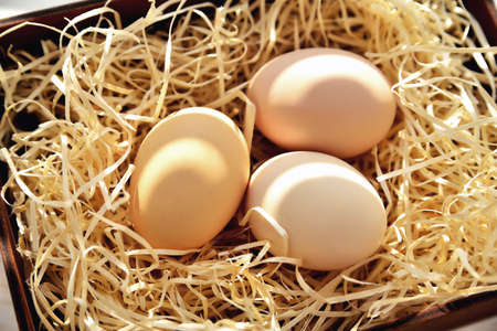 Three natural chicken eggs in a drawer with shavings in the backlight Stock fotó