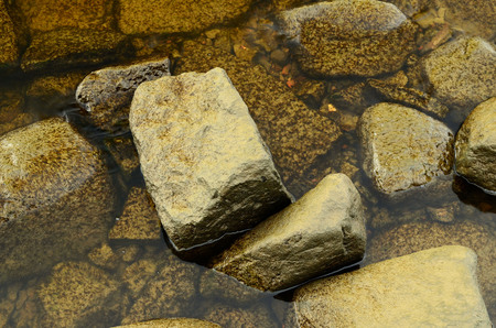 silt: Stones covered with silt, lie beneath the water.