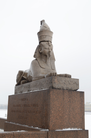 19.01.2017.Russia.Saint-Petersburg.The statue of the Sphinx stands on the banks of the river Neva.On the street it is raining.