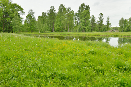 Young leaves on trees and green grass adorn the natural landscape.