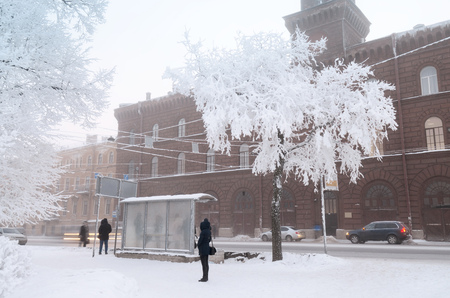 Snow-white winter in the city 版權商用圖片