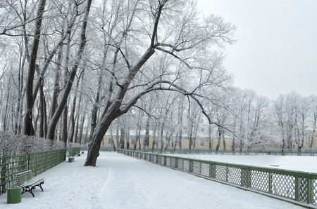Park in the city in winter.The trees are bare, without leaves.