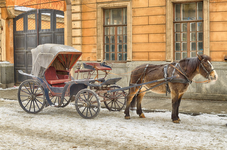 Horse-drawn sleigh waiting for passengers.A kind of taxi in the old days.