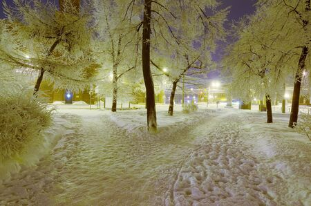 Night city in winter.Its freezing outside.There is a lot of snow around. Reklamní fotografie
