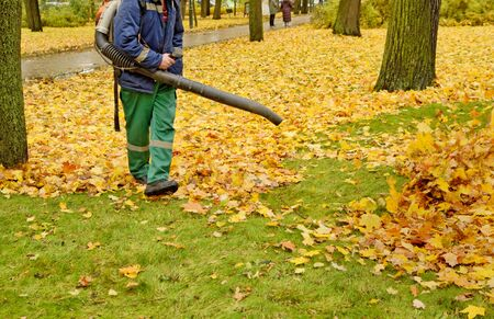 Worker cleaning company. Collects fallen leaves.Uses an apparatus to blow off leaves.