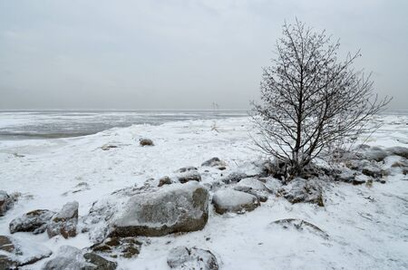 Its a cold and frosty winter.The Bay is covered with ice. Reklamní fotografie