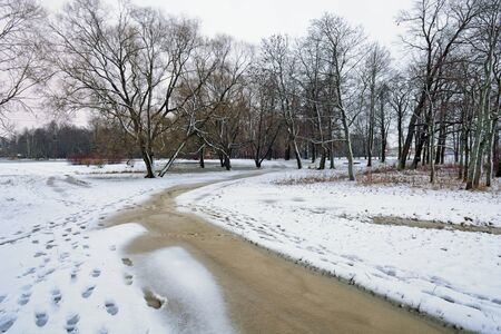 Natural landscape in the Park.On the ground and in the trees is a lot of snow.Beautiful and cold winter. Reklamní fotografie - 135329512