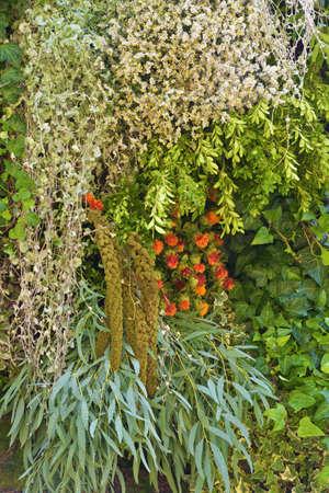 A beautiful bouquet of decorative, garden flowers.