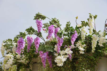 A beautiful bouquet of decorative, garden flowers.Wisteria stands out for its beauty. Reklamní fotografie