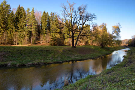 Beautiful natural landscape in autumn. The leaves on the trees are yellow and orange. Reklamní fotografie